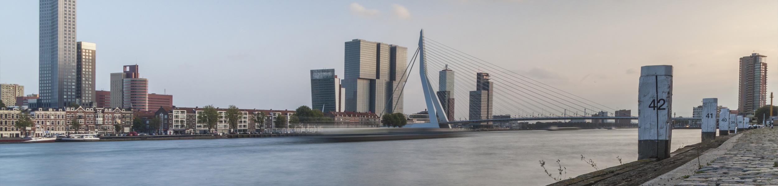 senior c  wpf developer job in rotterdam  the netherlands