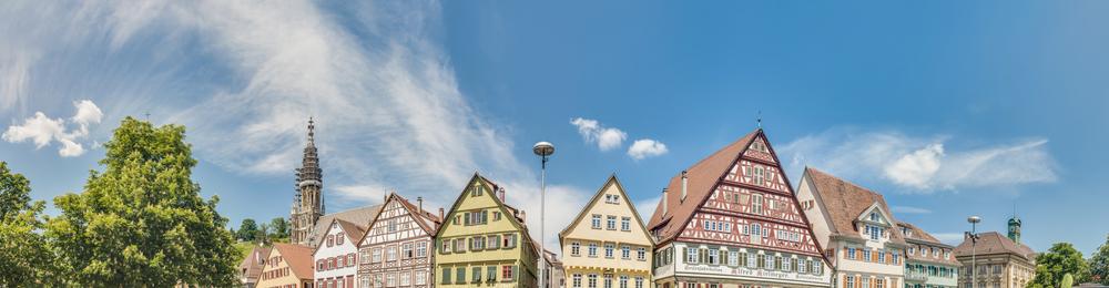 Senior Software Developer (ERP System) Esslingen, Stuttgart area, Germany