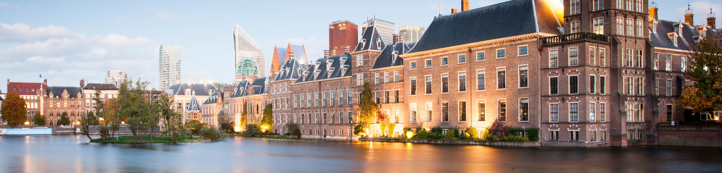 Senior C#/.NET Developer Den Hague, the Netherlands