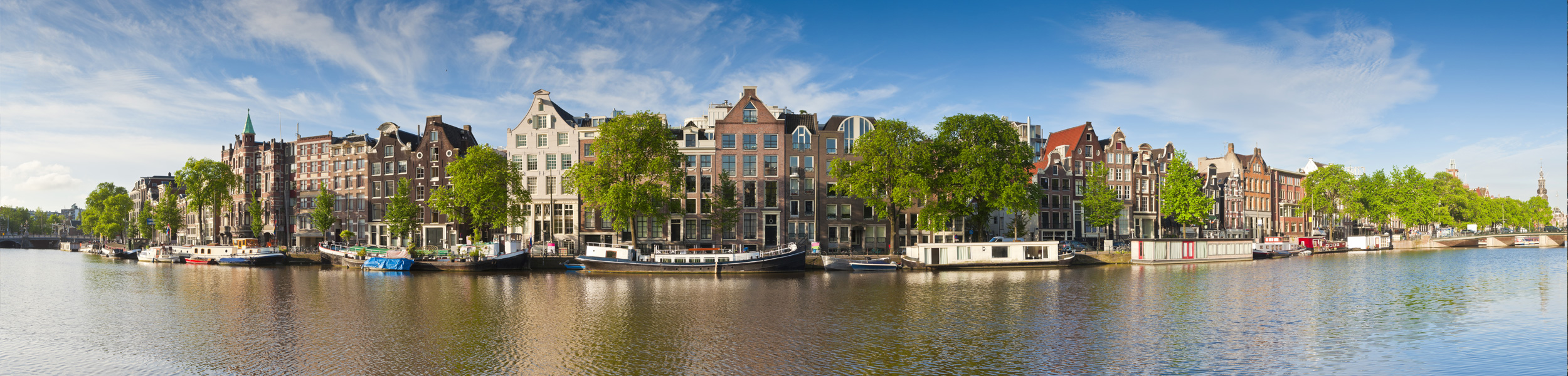 Senior Front-End Web Developer Amsterdam, The Netherlands